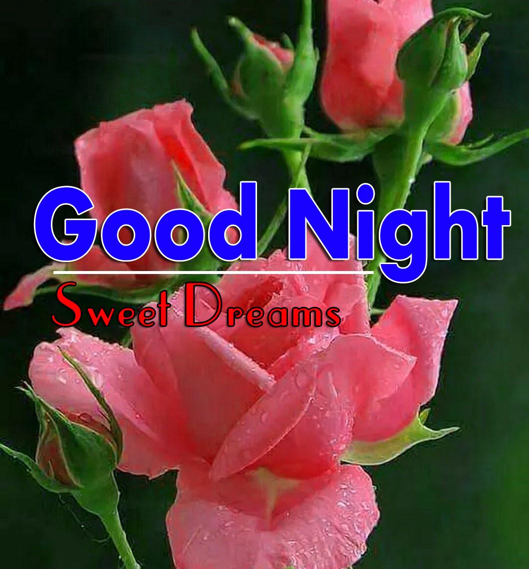 Good Night Pink Flower Good Night