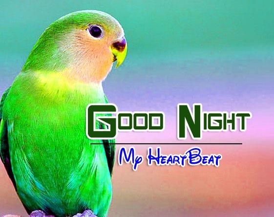 Good Night Wallapper Photo