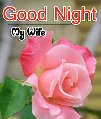 Good Night Wallpaper For Wife
