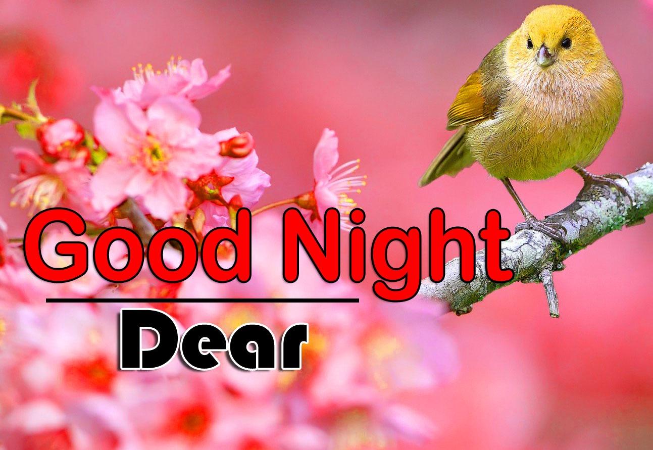Good Night Wallpaper Free Hd Pics