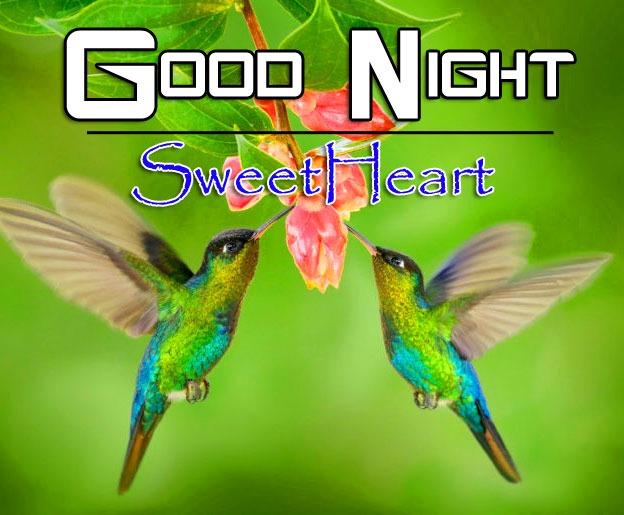 HD Good Night Free Wallpaper