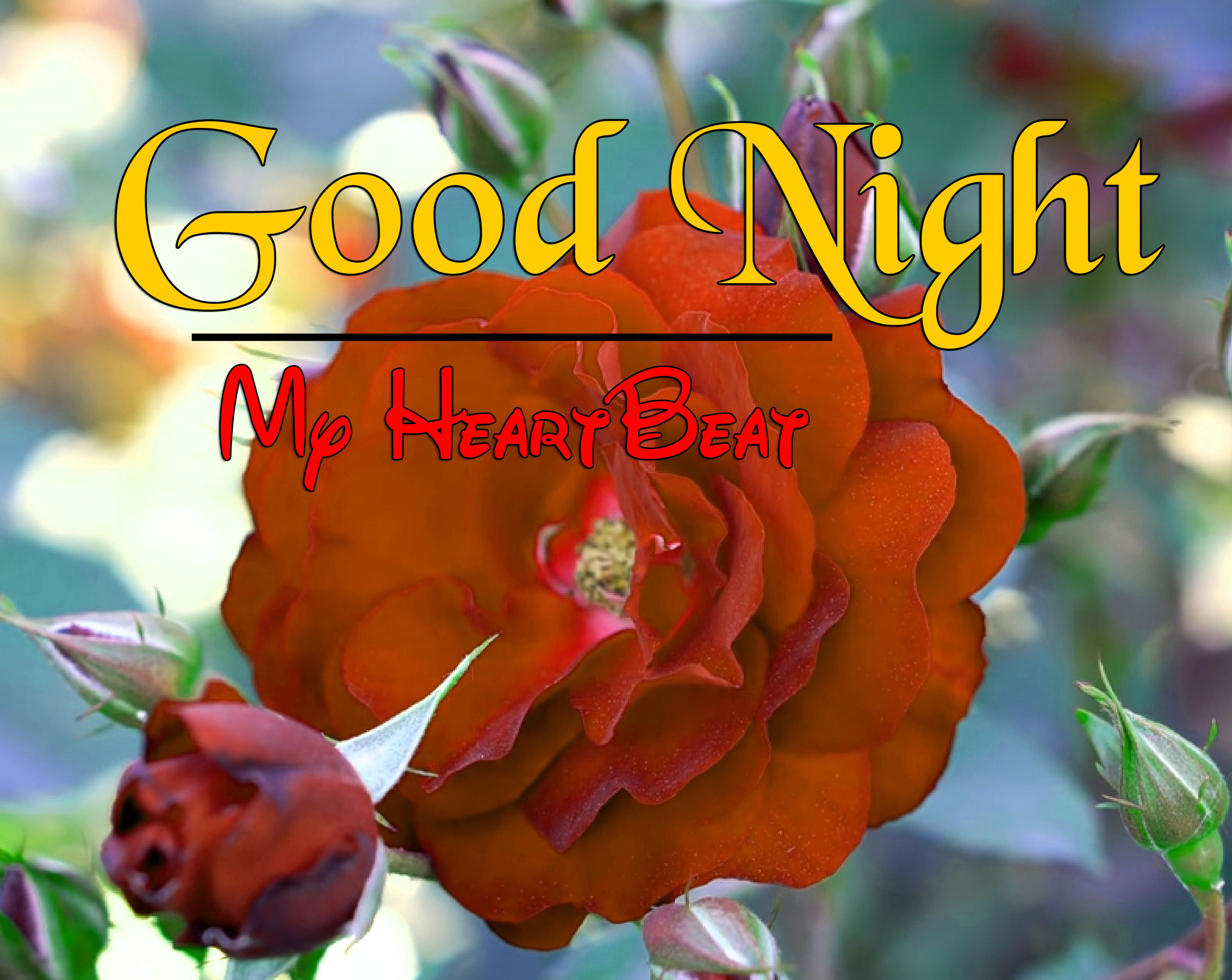 HD Good Night Images Wallpaper