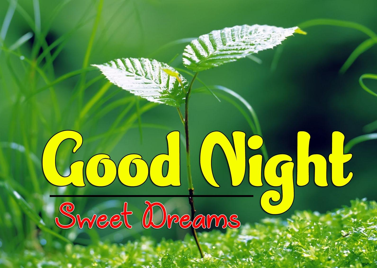 HD Good Night Wallapper Free