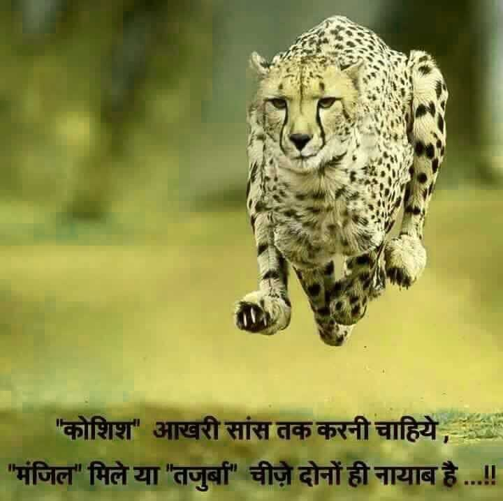 Hindi Attitude Images Pics Free Download