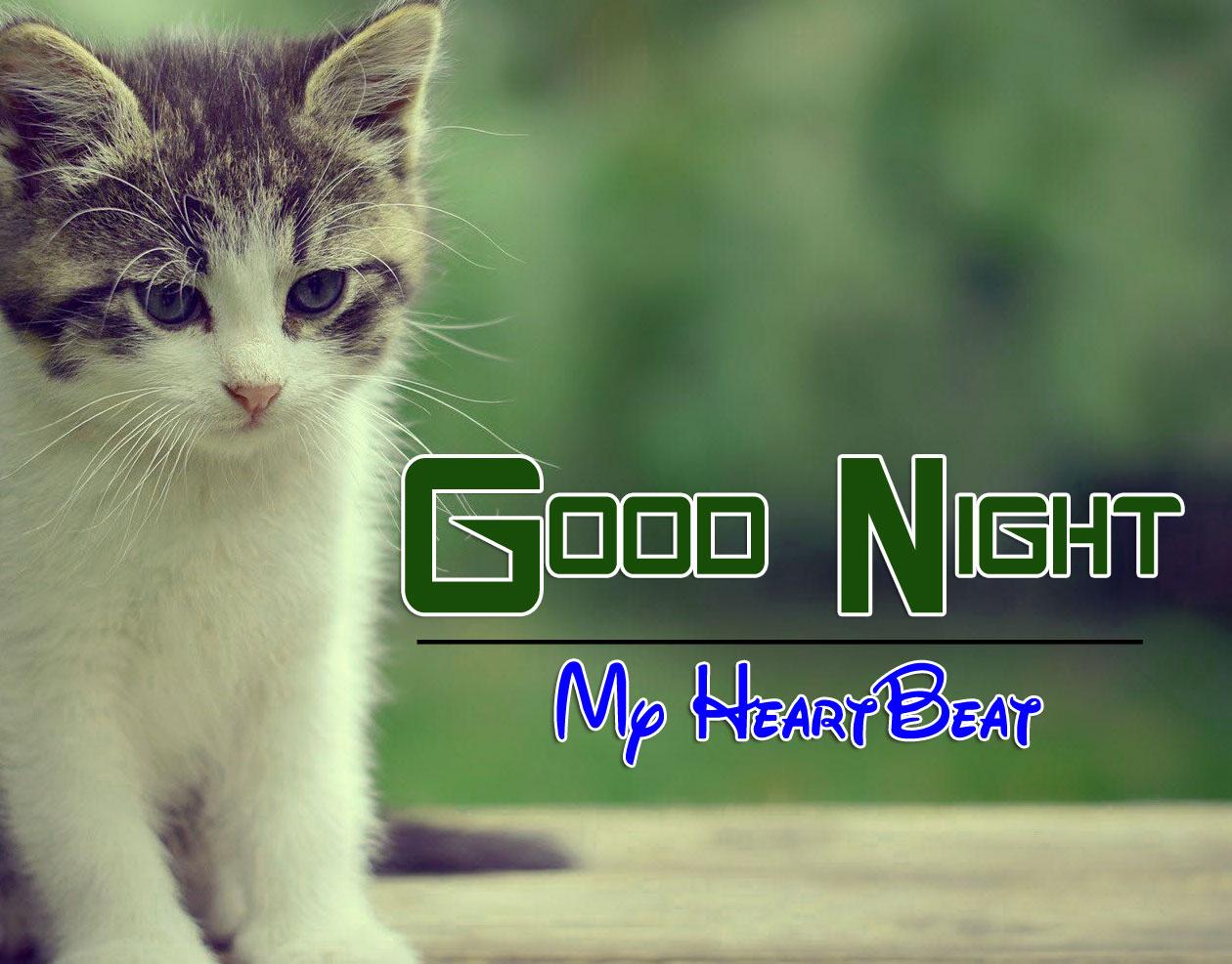 Latest Good Night Images Photo