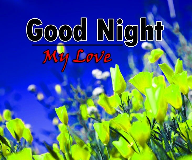 Latest Good Night Pics Downlod