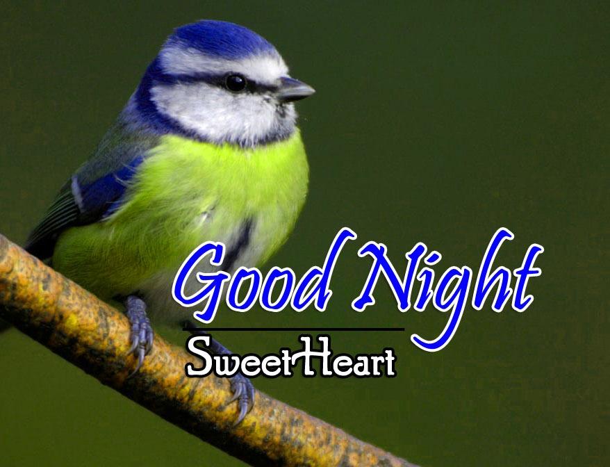 Latest Good Night Pics Images