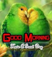 Latest Romantic Good Morning Images Photo