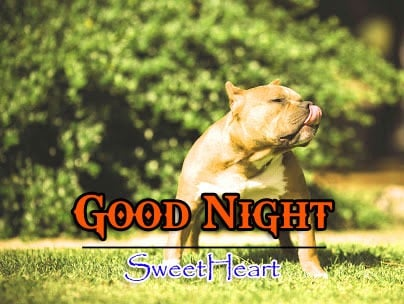 New Good Night Download Images