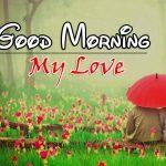 New Romantic Good Morning Wallapper Pics