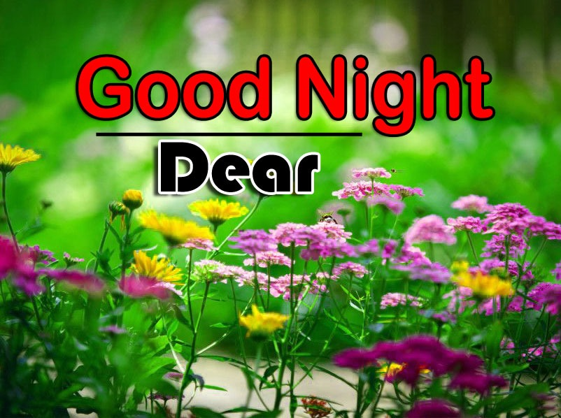 Nice Good Night Photo Images