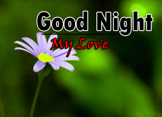Nice Good Night Pictures Images