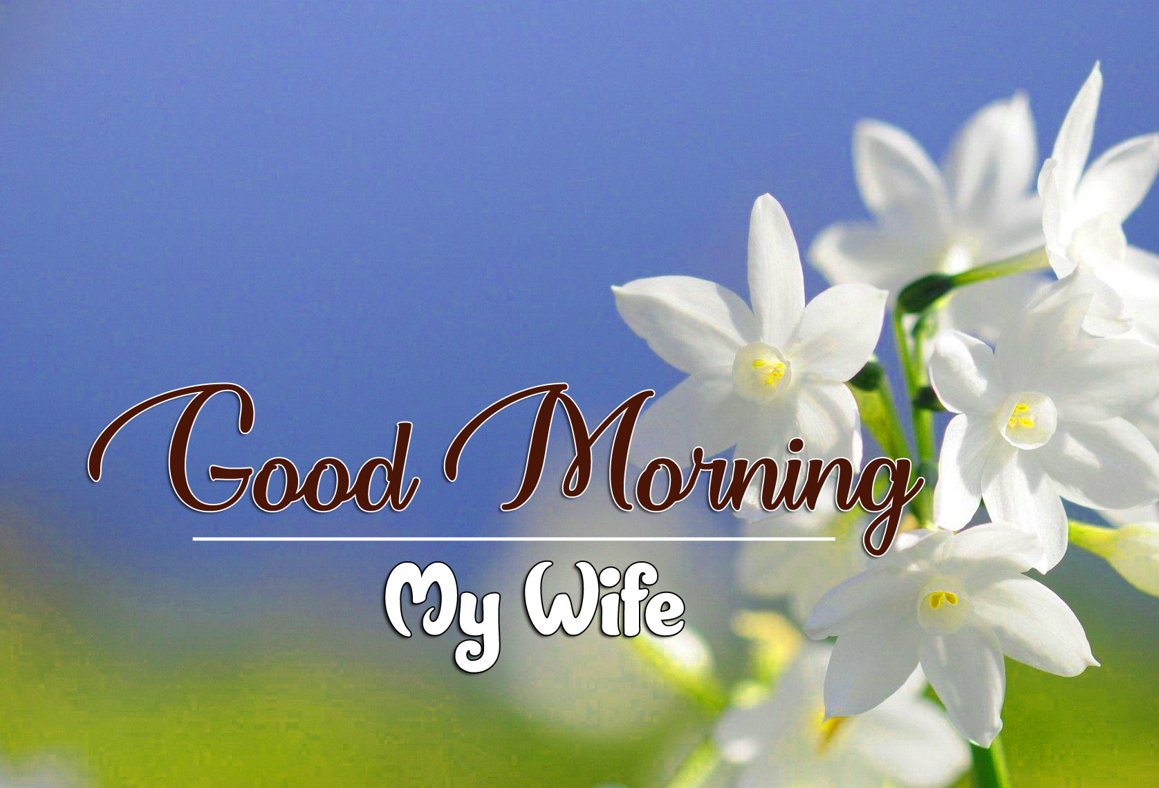 Romantic Good Morning Wallpaper Photo
