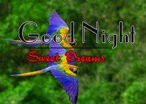 Top Good Night Download Pics