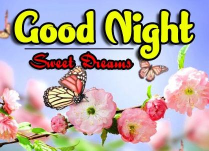 Top Good Night Download Wallpaper