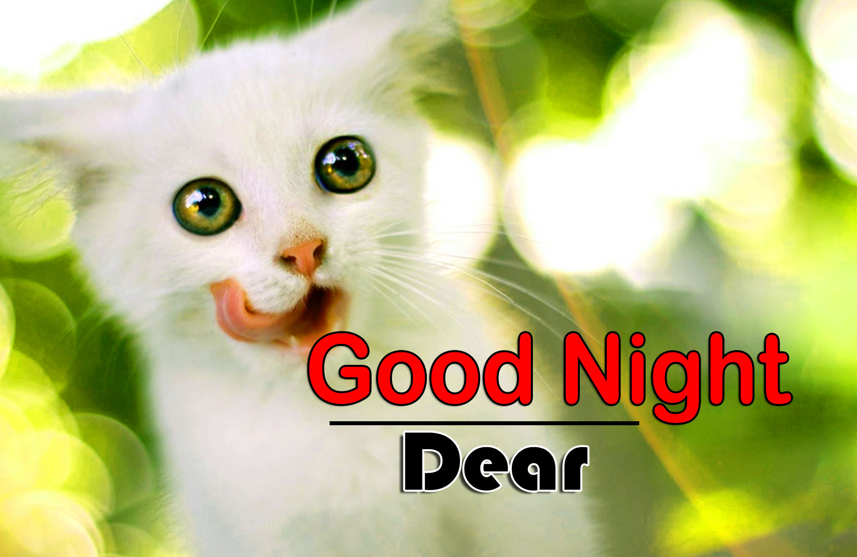 Top Good Night Free Download Images