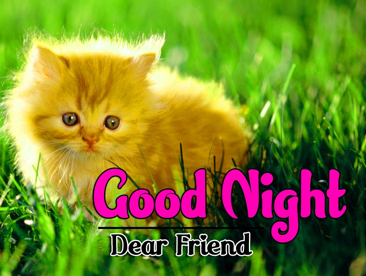 Top Good Night Images Download Free e