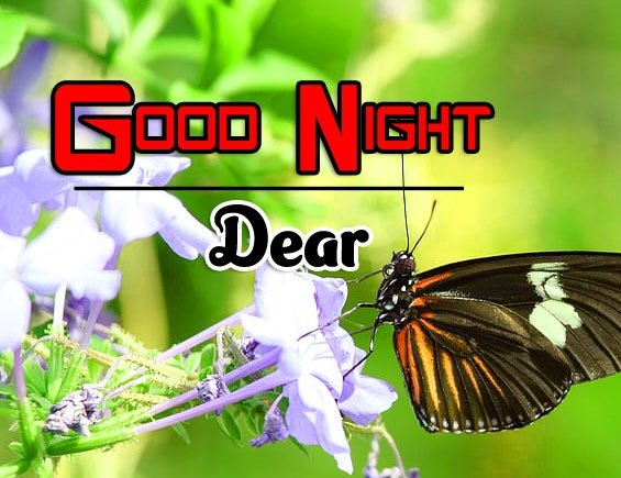Top Good Night Images Photo