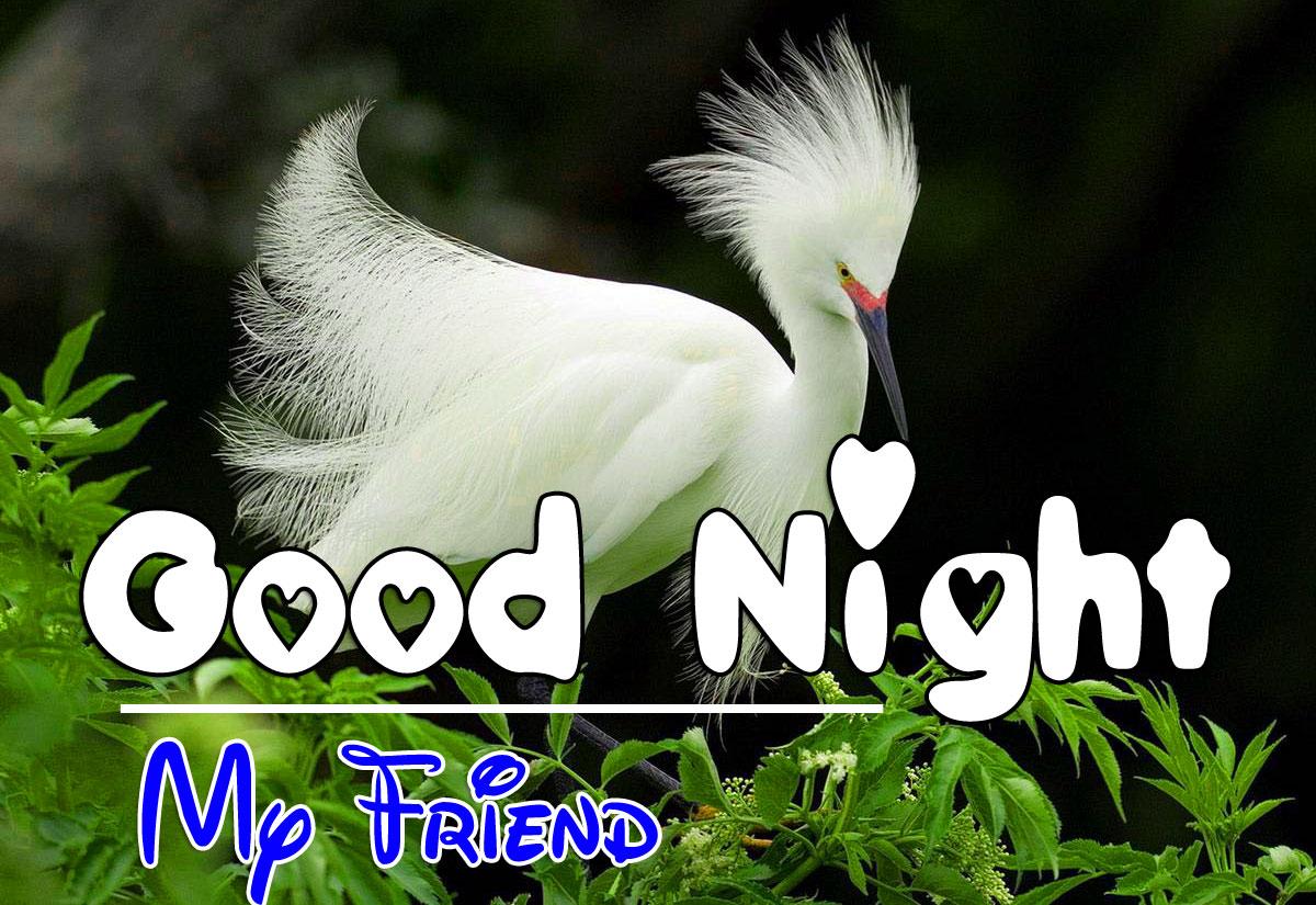 Top Good Night Photo Wallpaper Hd