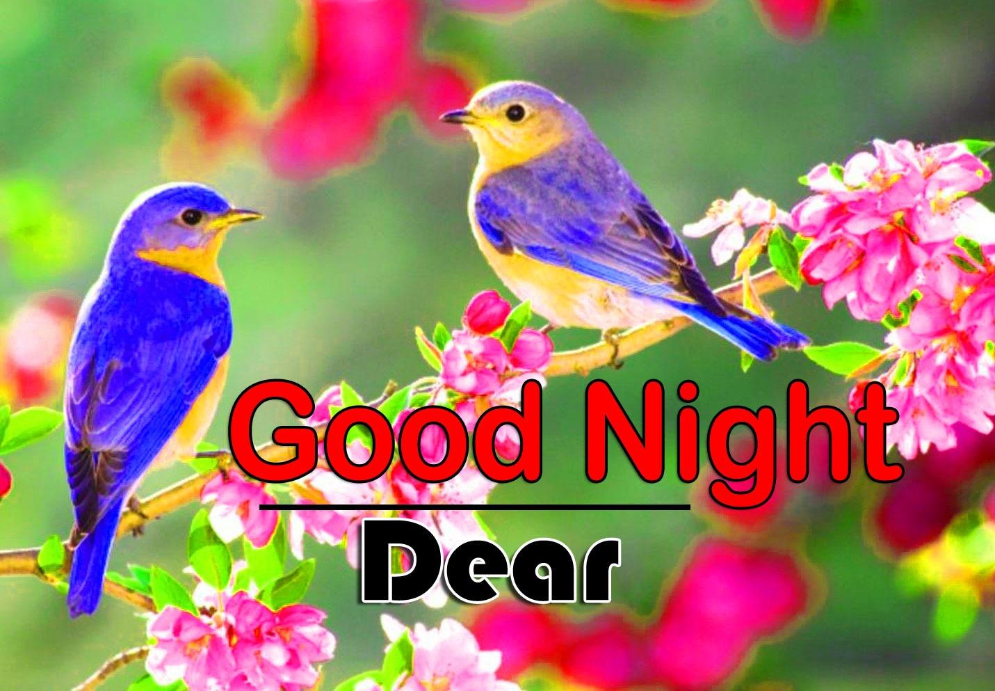 Top Good Night Pics