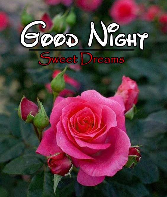 Top Good Night Wallpaper Images