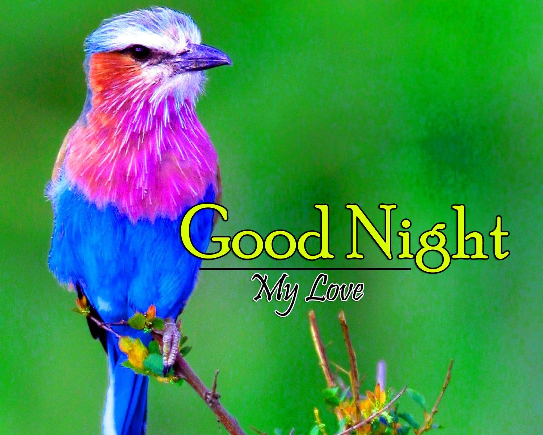 Top Good Night Wallpaper Pics