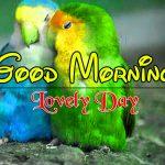 Top Romantic Good Morning PIcs Wallpaper