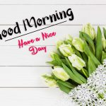 beautiful flower good morning images photo hd download