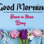 beautiful flower good morning images pics hd download