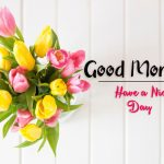 beautiful flower good morning images wallpaper for facebook