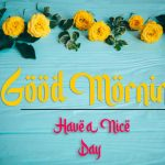 beautiful good morning images photo free hd download