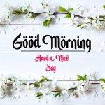 beautiful good morning images pictures for hd