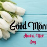 beautiful good morning images pictures hd