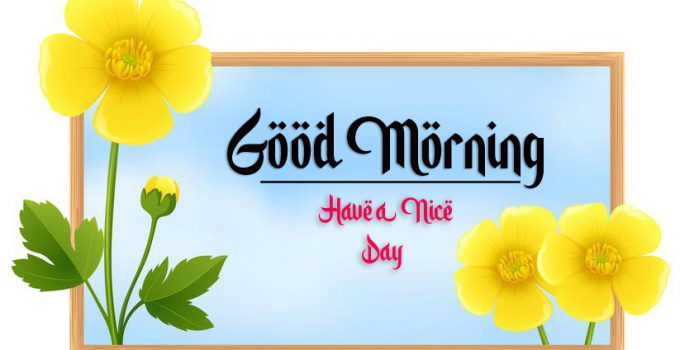 beautiful good morning images wallpaper free hd download