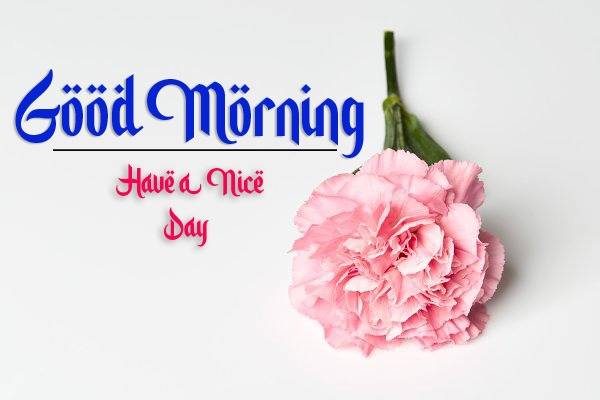 latest good morning images photo hd