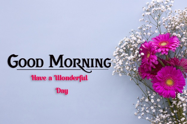 new good morning images photo free hd download