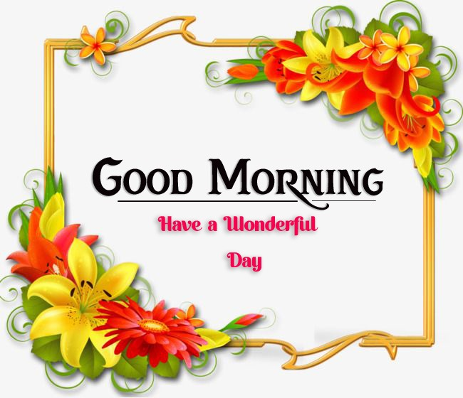 new good morning images photo hd download
