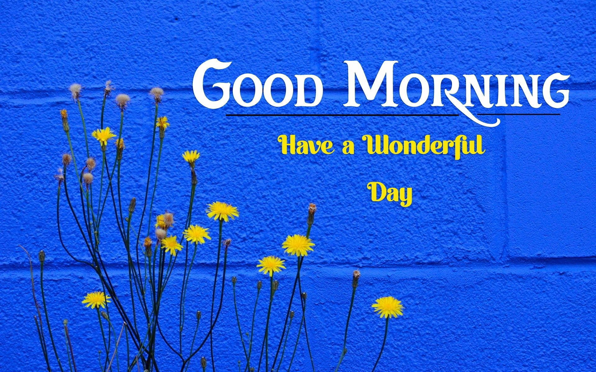 new good morning images pics hd download
