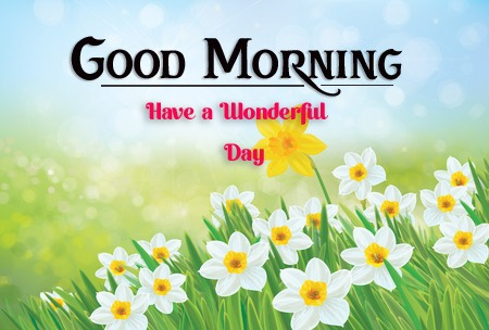 new good morning images pictures hd download