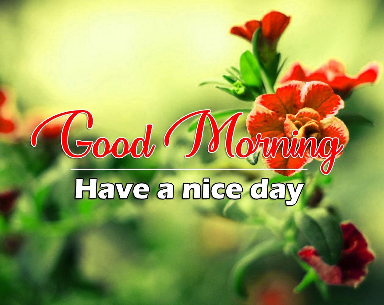 Beautiful Good Morning Images Pics Hd
