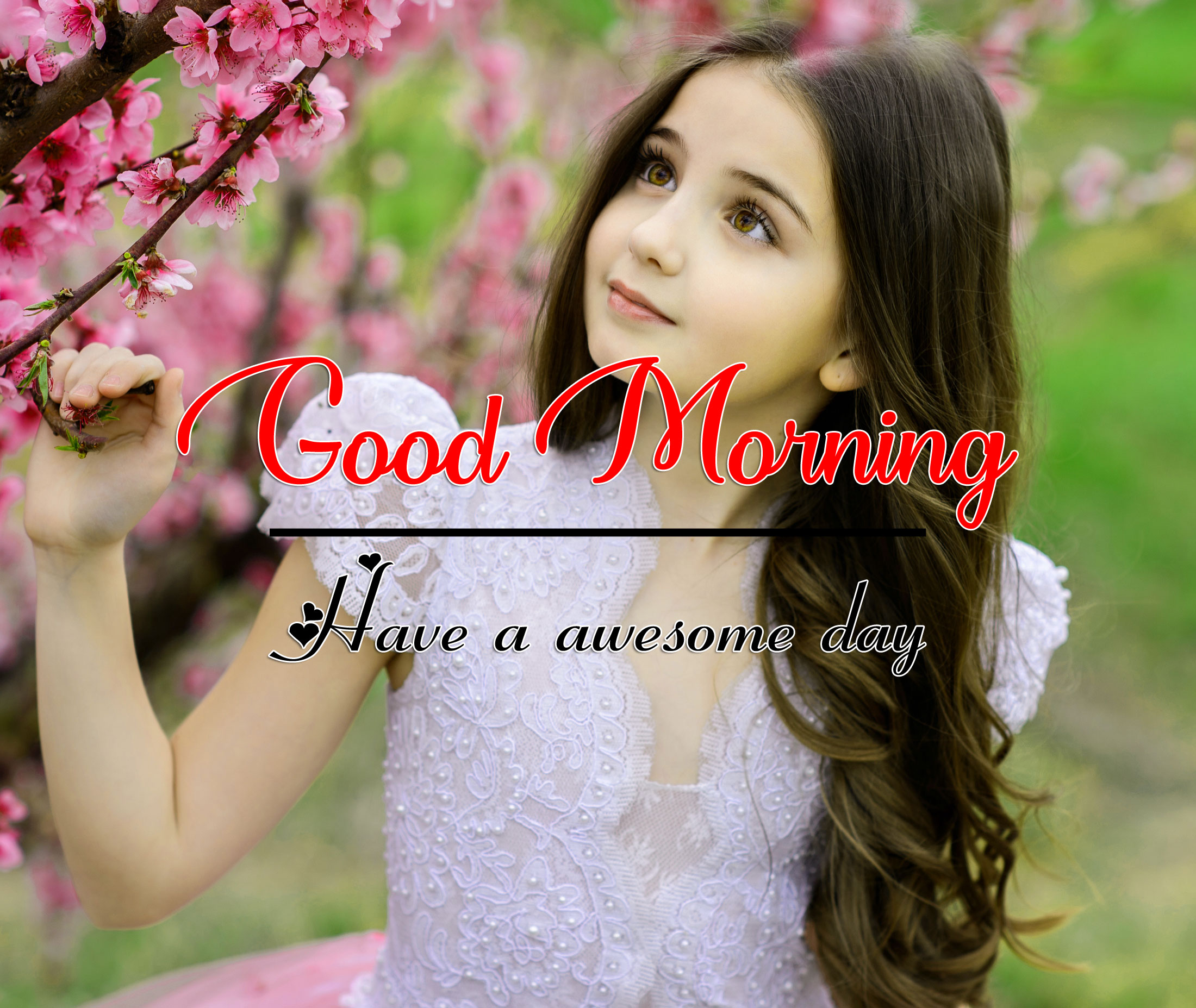 Beautiful Good Morning Pic Images
