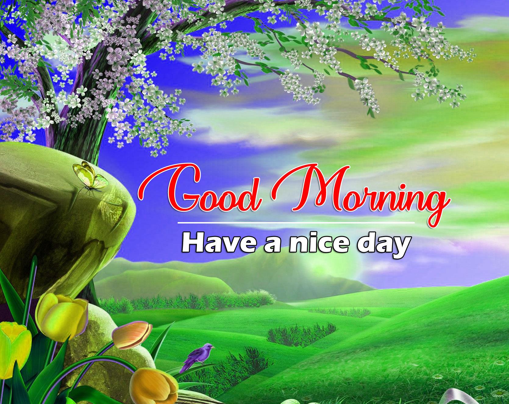 Beautiful Good Morning Wallpaper Pics