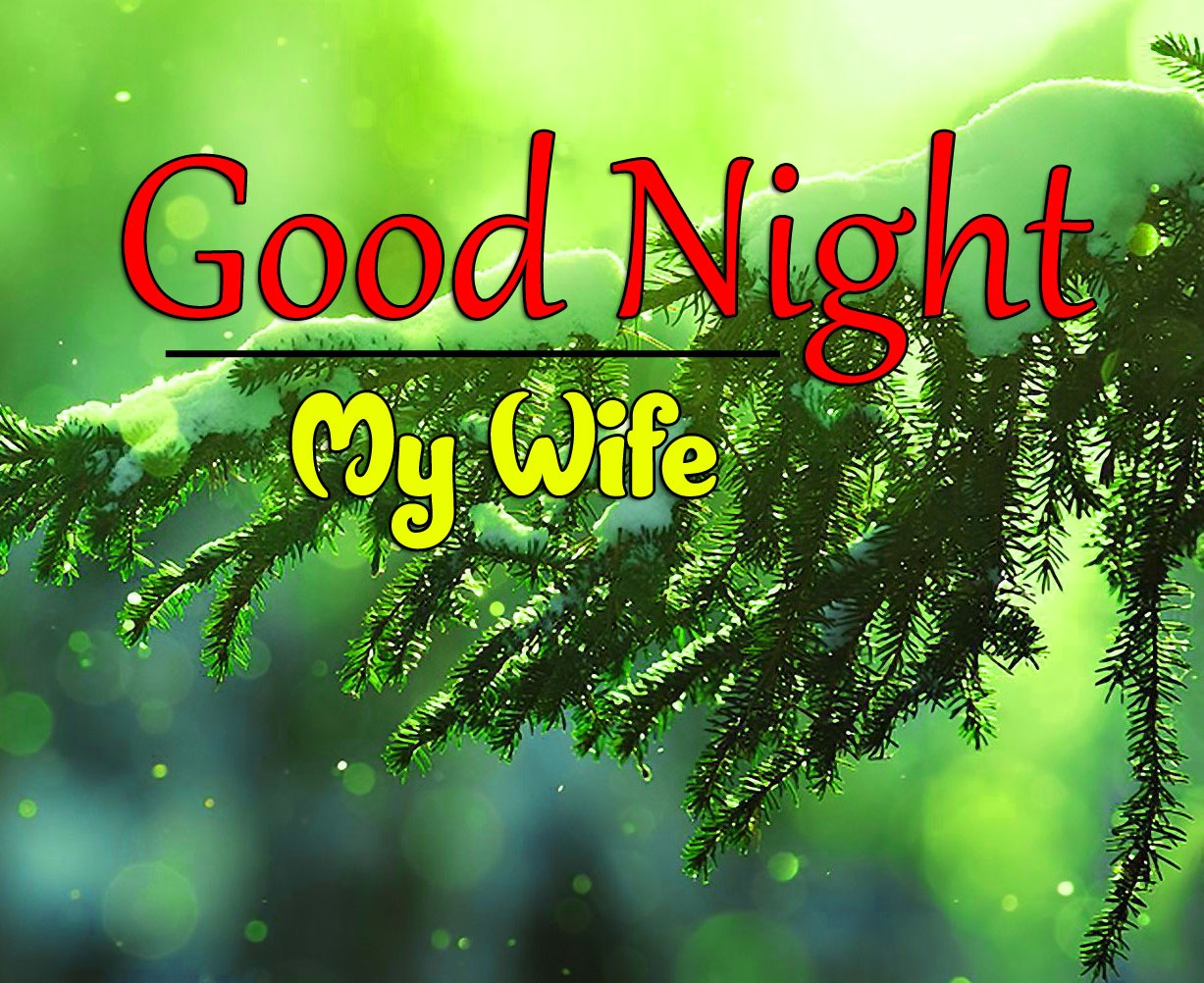 Beautiful Good Night Images Pics Download Free