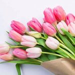178+ Nice Flower Nature & Girls whatsapp dp Images Profile Pictures 2021