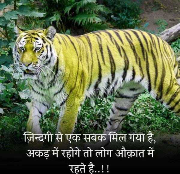 Best Killer Attitude Whatsapp Dp Images Download