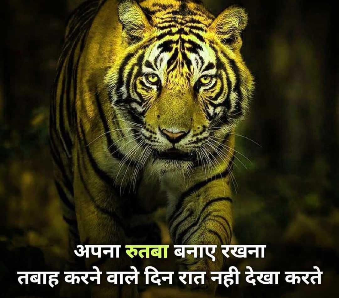 Free Hindi Attitude Images For Boys Wallpaper Free