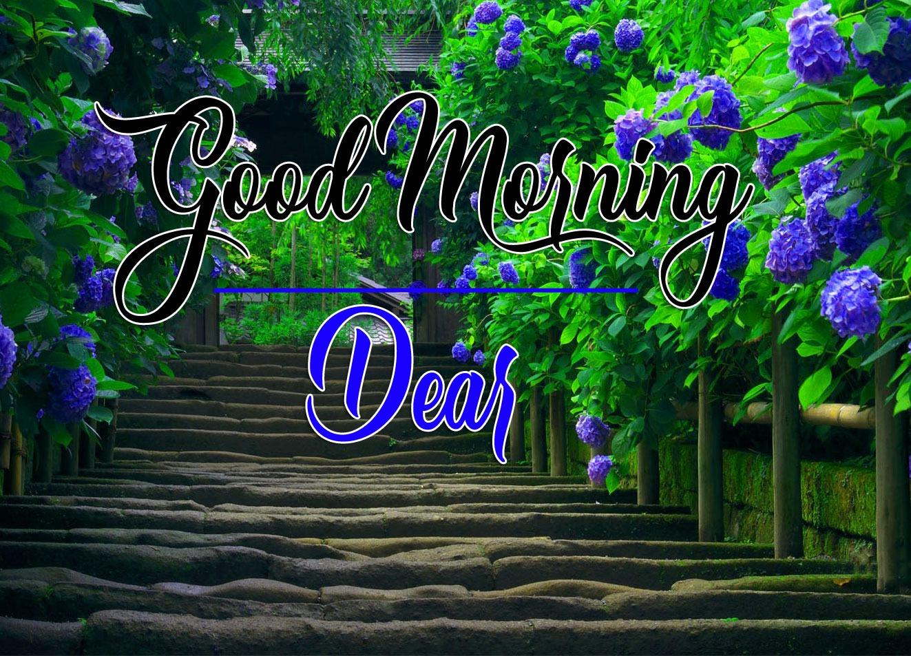 Good Morning Pics Images Hd