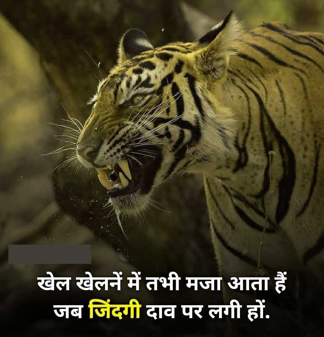 Hindi Attitude Images For Boys Pics Pictures