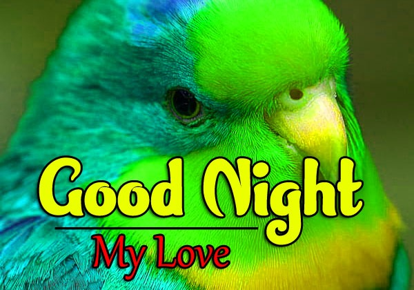 Latest Good Night Wishes k Images Pics Pictures Download