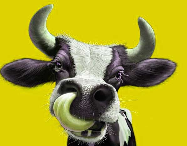 Latest Funny Whatsapp DP Pics For Cow